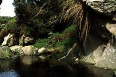 River Gony