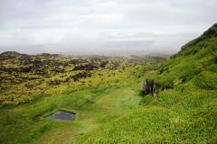 Santa Rosa and Grey-headed Ridge