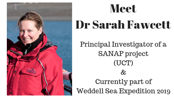 Antarctica, Weddell Sea, Weddell Sea Expedition, Science, Oceanography, University of Cape Town, Fawcett Lab