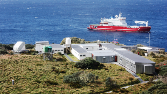 Gough Island Restoration Programme – do you want to be part of the team?