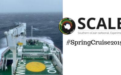 Spring Cruise 2019 – onboard the S.A. Agulhas II