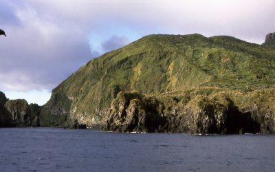 World Heritage Day 18 April 2020 – GOUGH Island declared Heritage Site in 1995