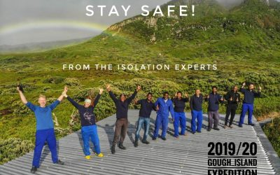 Gough Island Newsletter Issue 3 – Now available