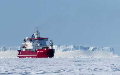 Early Career Opportunity with Weddell Sea Working Group