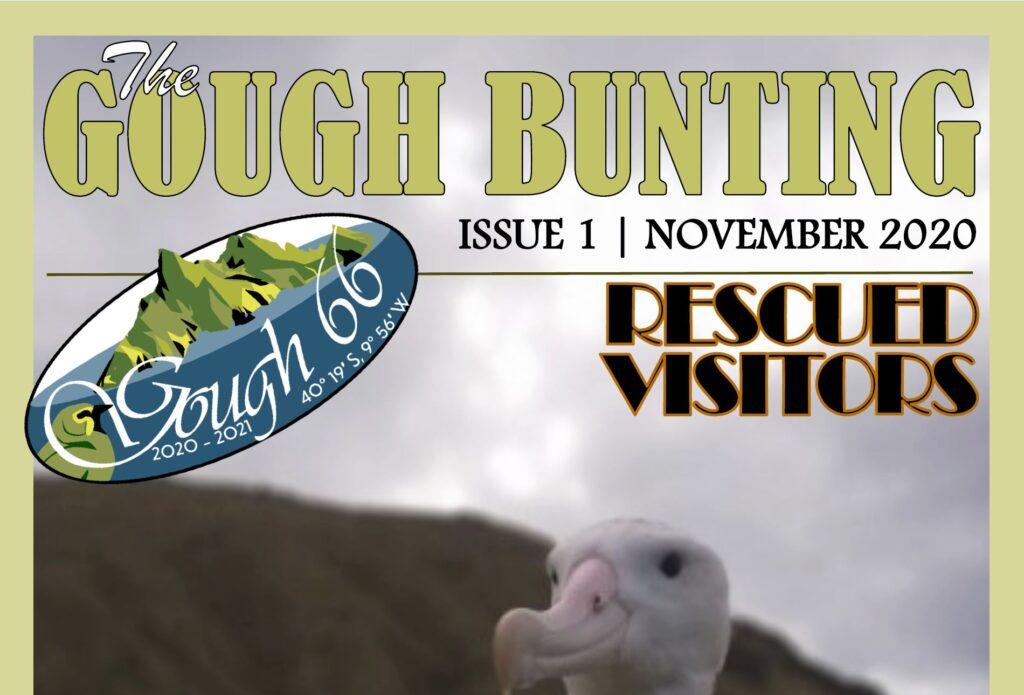 Gough Island Newsletters