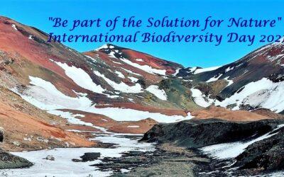 Celebrating biodiversity of Marion Island